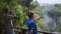 bird-watching-ama-in-la-fortuna-costa-rica-493791