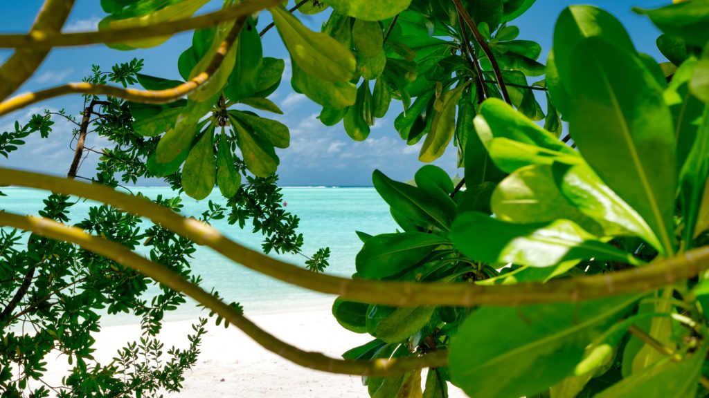 Places to stay in Tamarindo Costa Rica