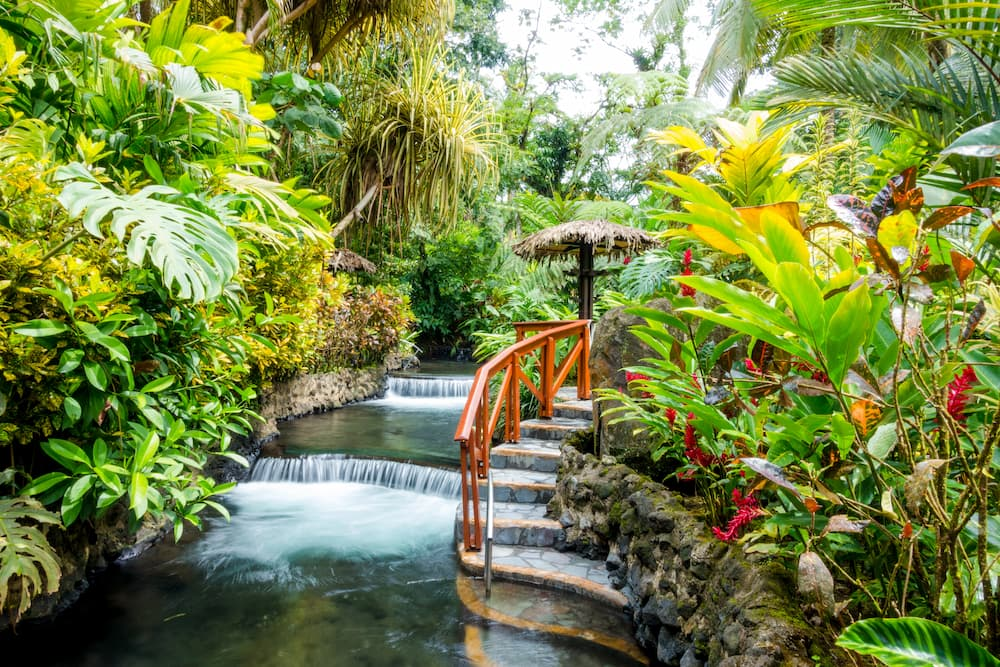 Reasons to visit Costa Rica for Lovebirds